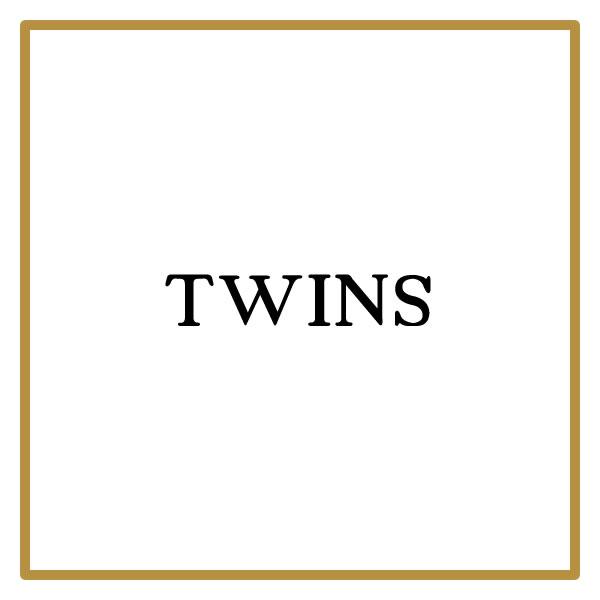 twinSlogo